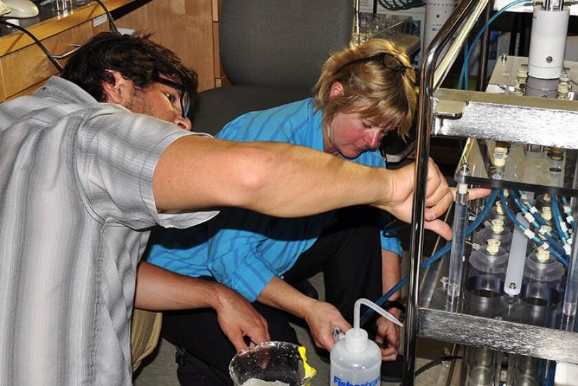 Deep-sea microbes