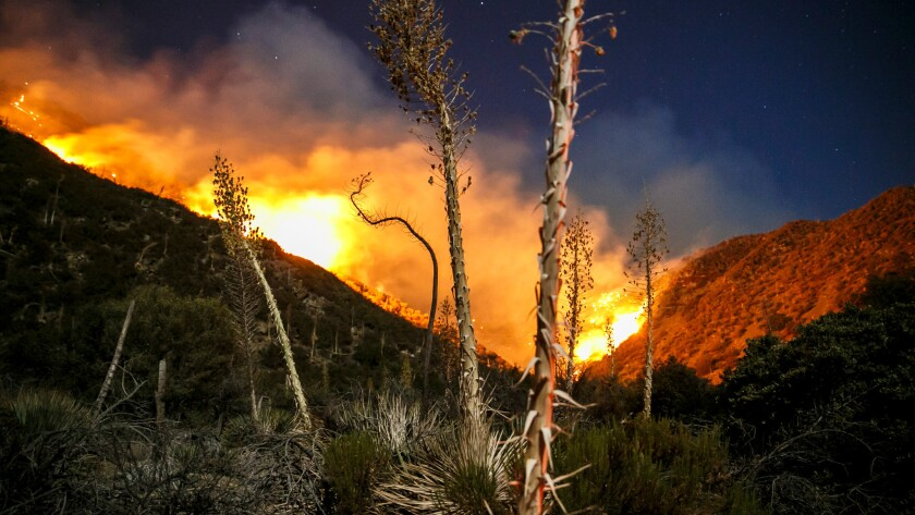 The Blue Cut fire continues to burn north of Lytle Creek in San Bernardino County on Saturday.