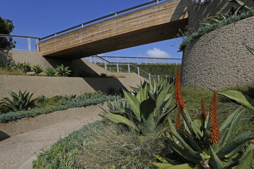 Native and drought-tolerant plants complement the clean lines of bridges and pathways in Tongva Park. The landscape design is by James Corner Field Operations, based in New York City, which also designed Manhattan's High Line park.