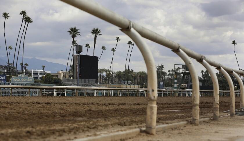 Santa Anita Fatalities Horse Racing