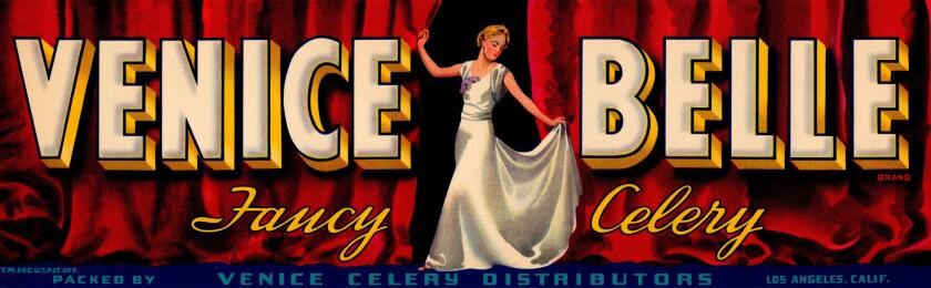 Venice Belle celery label printed for Venice Celery Distributors in 1939 ? David Karp 5/2/2019