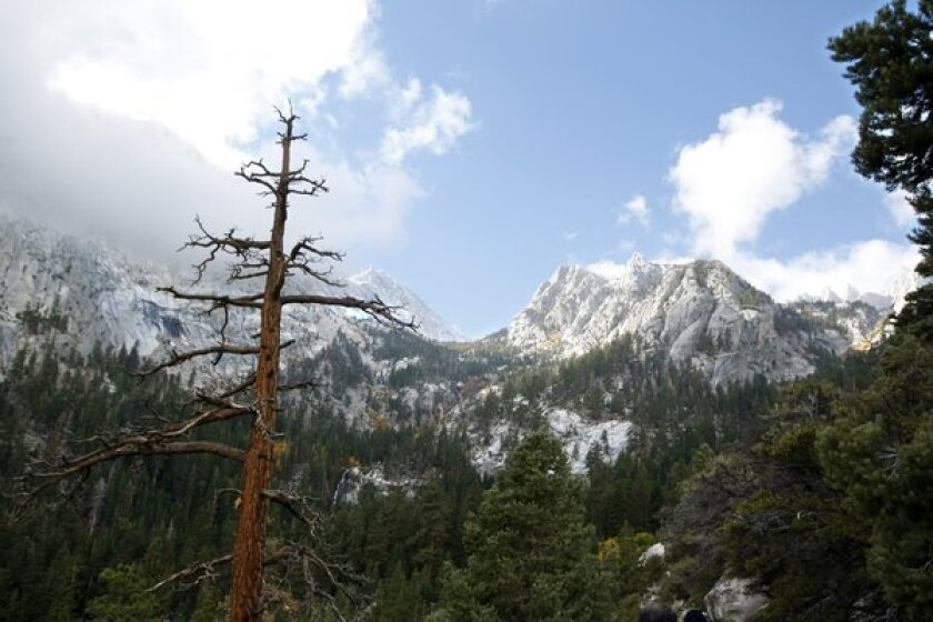 Park rangers recovered the body of a Torrance man who fell to his death after reaching the summit of Mt. Whitney.