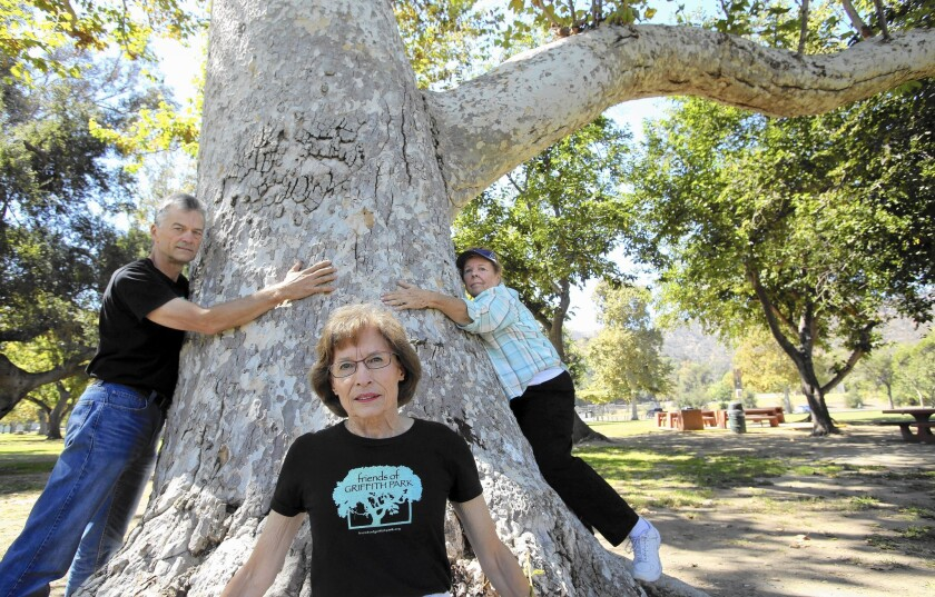 Gerry Hans, left, president of Friends of Griffith Park, Marian Dodge, the group's vice president, and Clare Darden, board member of the Griffith J. Griffith charitable trust, are opposed to plans to transform a portion of the park's picnic grounds into two baseball fields.