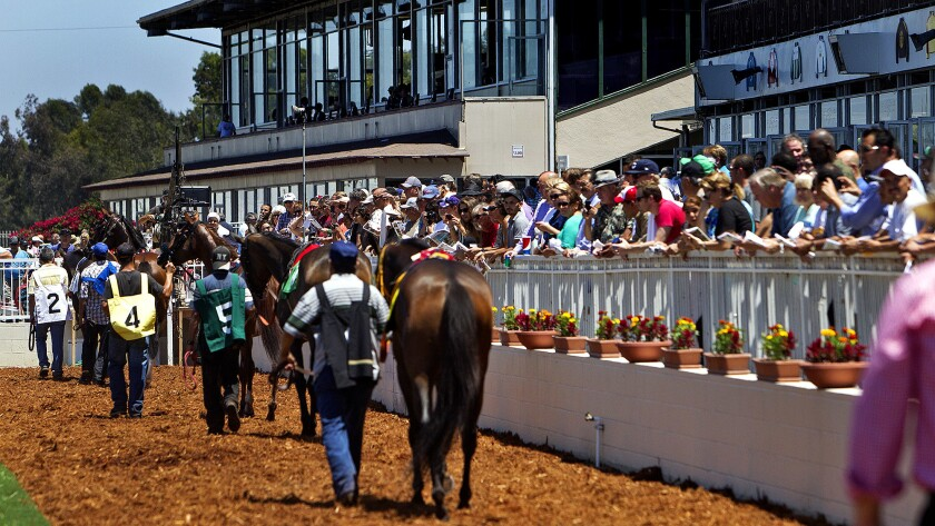 Los Alamitos Race Course offers quarter-horse as well as thoroughbred racing.