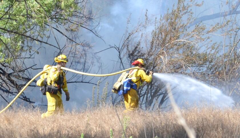 brush fire._1796.jpg