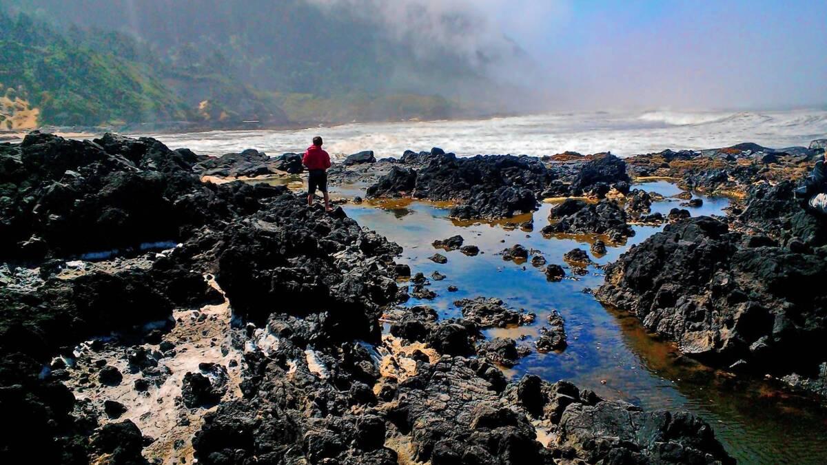A Coastal Backyard In Yachats Oregon Los Angeles Times
