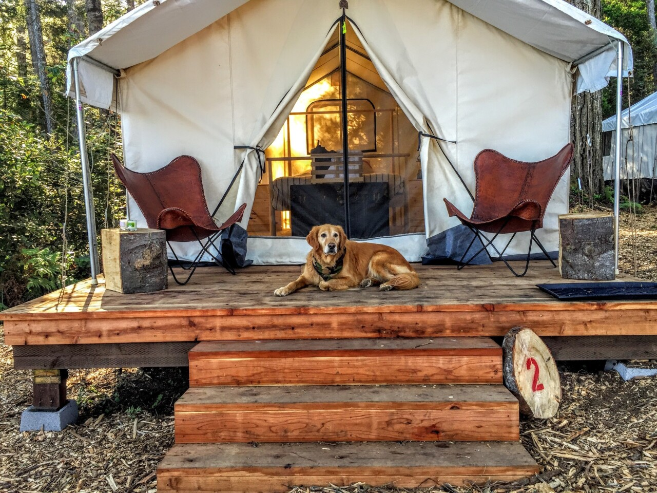 """Want to glamour camp, i.e. """"glamp""""? You can haul your own gear, rent it (and pay to have it set up) or, as is the case here, secure a reservation at a resort such as Mendocino Grove in Mendocino, Calif."""