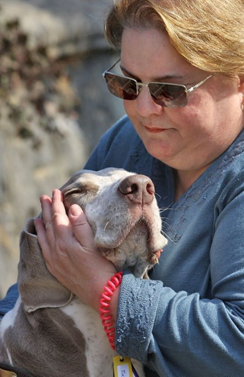Kathy McAvoy-Rogalski, 56, of Yonkers, N.Y., took care of Gunner as part of her Fetch Pet Care franchise.
