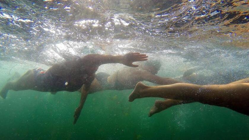San Diego's best ocean swimming - Pacific San Diego