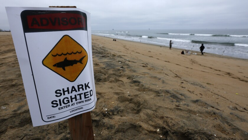 Lifeguards are keeping a stretch of shoreline between Sunset Beach and Bolsa Chica State Beach closed to swimmers and surfers after a shark sighting.