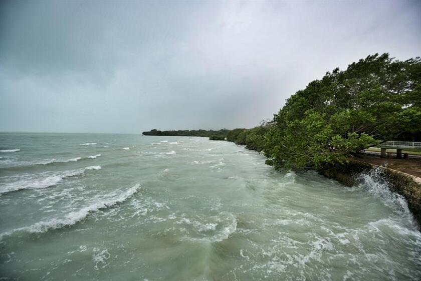 La tormenta tropical Vicente se formó hoy en aguas del océano Pacífico frente al estado mexicano de Chiapas con pronóstico de trayectoria paralelo a la costa oeste del país, dijo hoy el Servicio Meteorológico Nacional (SMN). EFE/ARCHIVO