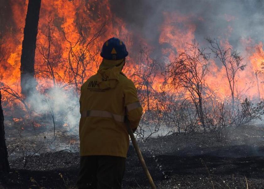 El Gobierno de México envió este martes a Canadá 102 efectivos más para combatirlos incendios forestales tras una solicitud de apoyo del Gobierno canadiense, informó hoy la Comisión Nacional Forestal (CNF). EFE/ARCHIVO