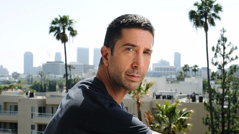 """David Schwimmer embarks on a new TV role in """"Feed the Beast."""""""