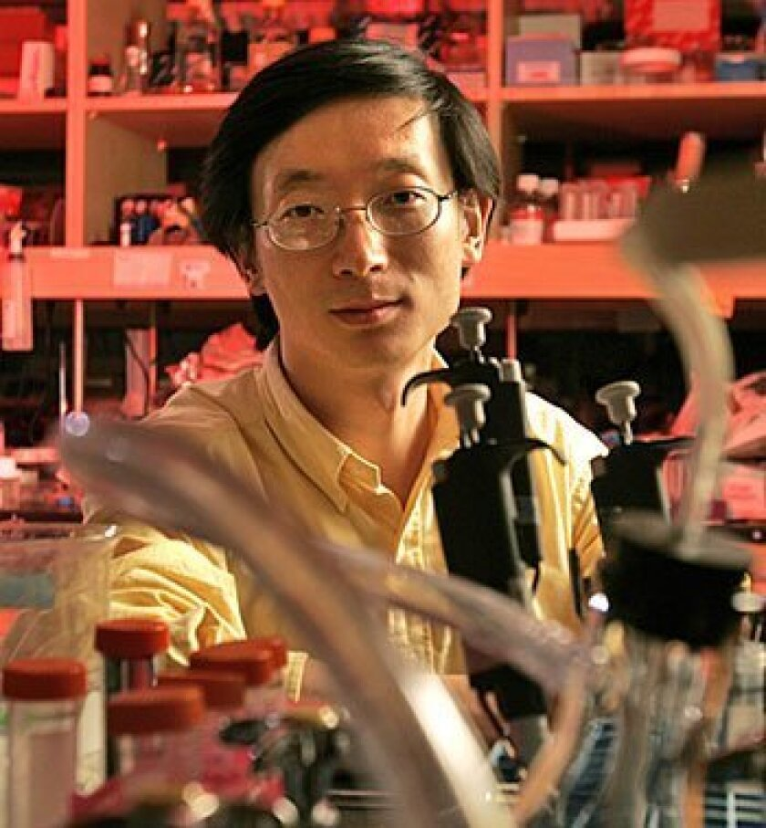 Sheng Ding of Scripps Research  Institute led research into a new way  to create embryonic-like stem cells. (Howard Lipin / Union-Tribune)