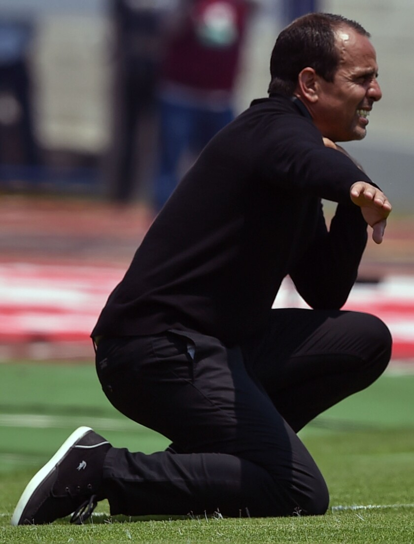 Colombian Oscar Pareja took over as Tijuana Xolos coach in December for Diego Cocca.