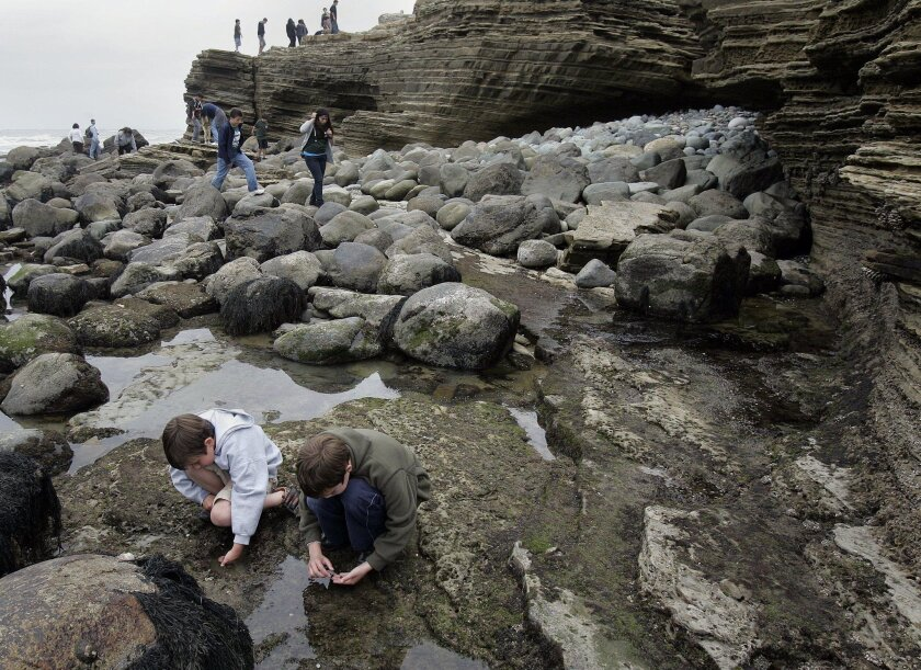 Brothers Lucas and Sammy Arden of Chula Vista check out the tide pools near Cabrillo National Monument in 2011.