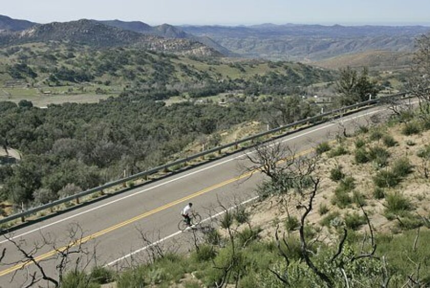 Rick Nielsen of Escondido grinds his way up Palomar Mountain. A number of local riders tackled the peak ahead of today's race. (Charlie Neuman / Union-Tribune)