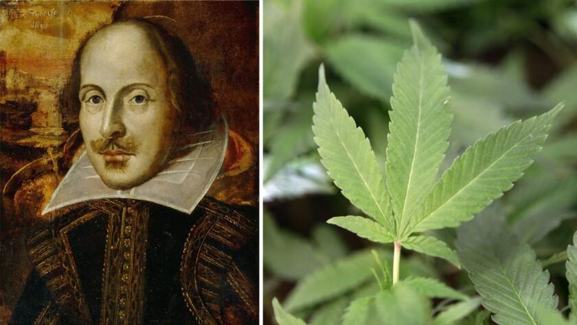 William Shakespeare and marijuana