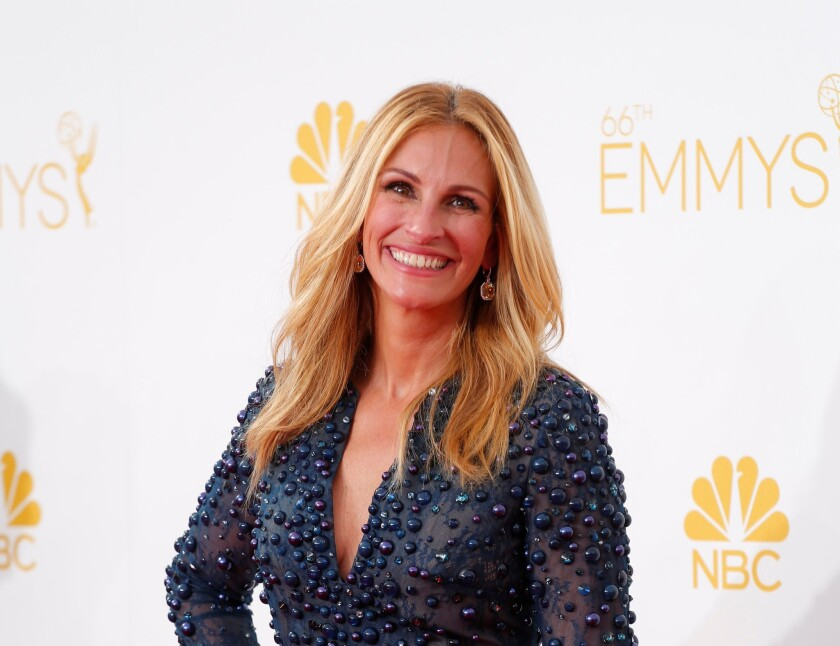 Julia Roberts is attached to produce and star in a movie about the pint-size hero known as Batkid.