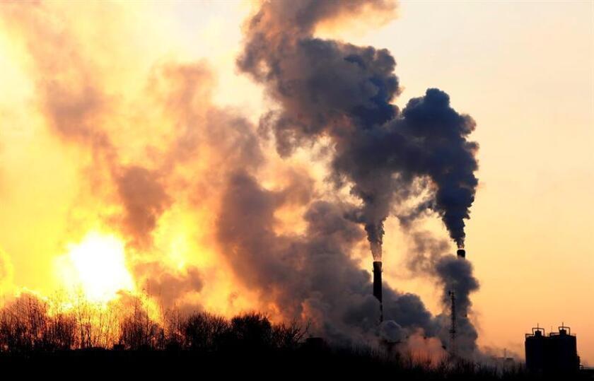 """Es el segundo año consecutivo en que crecen las emisiones de uno de los gases causantes del """"efecto invernadero"""", pero aun así Jackson, profesor jefe y miembro senior del Instituto Precourt de Energía de Stanford, no pierde la esperanza de que las energías limpias se impongan en todo el mundo. EFE/Archivo"""