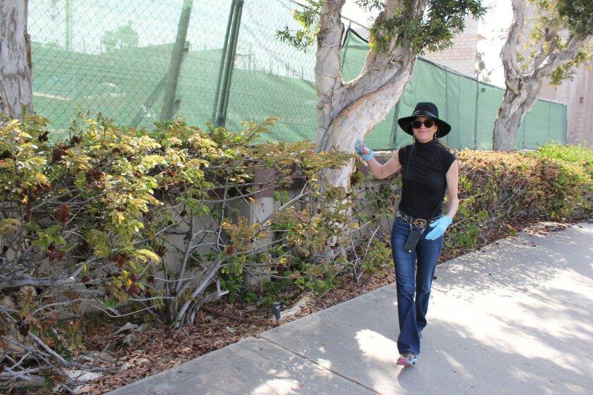 Warwick's Bookstore owner Nancy Warwick retrieves trash from bushes along Fay Avenue.