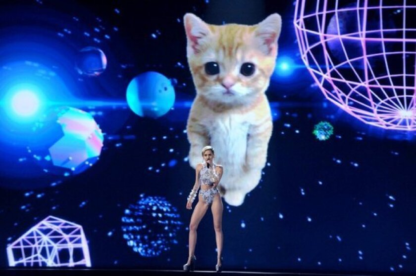 Miley Cyrus and the kitten
