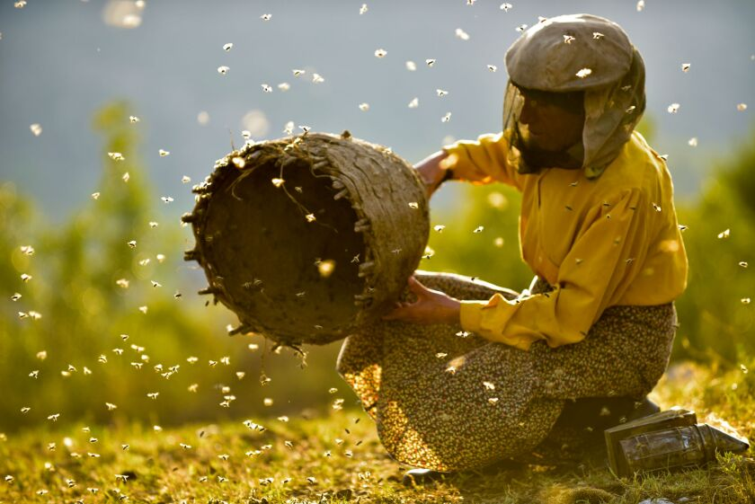 "Beekeeper Hatidze Muratova in the documentary ""Honeyland."""