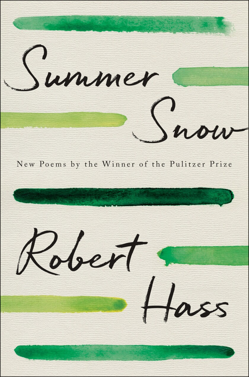 """Book cover for """"Summer Snow."""""""