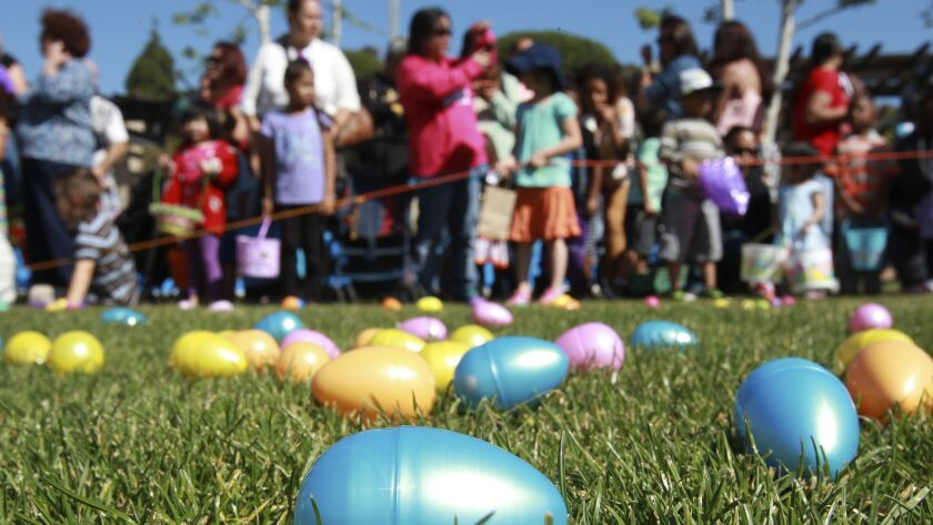Plastic Easter eggs are spread across the grass as children, ages 4-7, wait for the start of the Easter egg hunt.