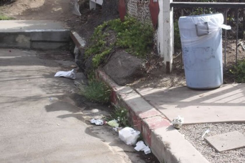 Garbage tends to accumulate at the lookout point on Forward Street because the trash is only picked up twice a week by the Maintenance Assessment District.