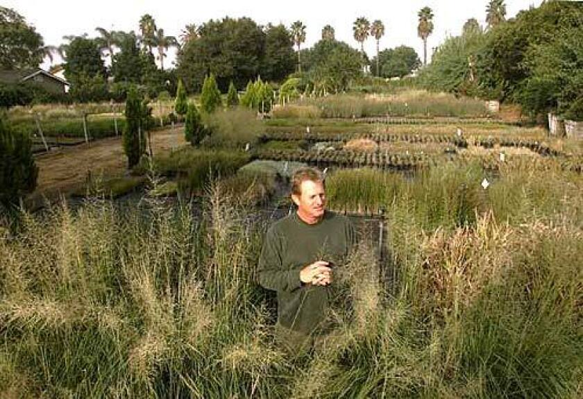 John Greenlee led a grasses revolution, a movement to turn manicured lawns into untamed meadows. His new goal: Go mass market.