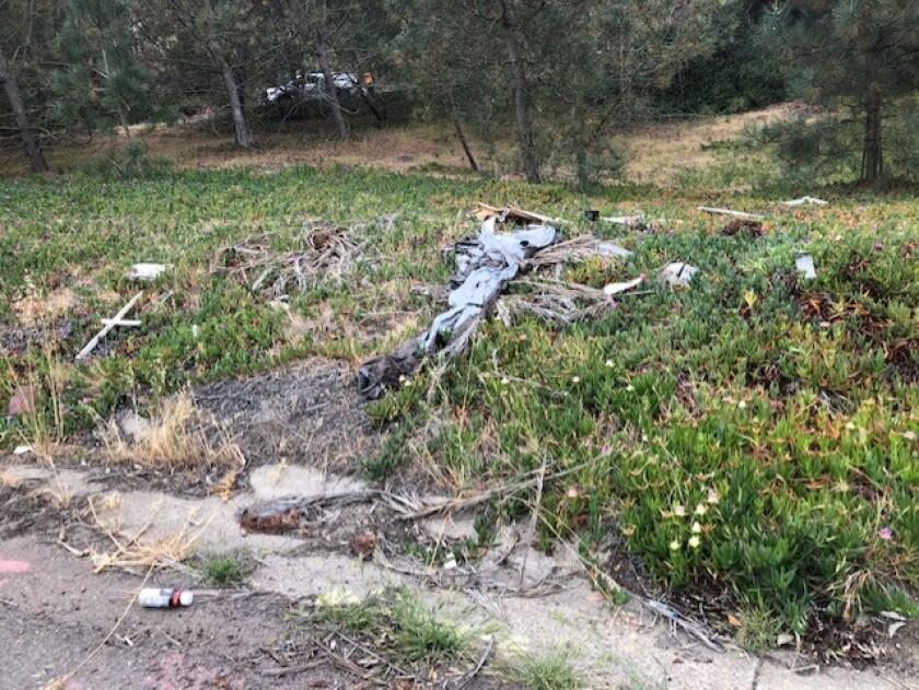Trash off La Jolla Parkway