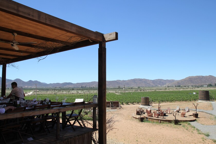 Shown is a view of Baja California's Valle de Guadalupe from the terrace of Finca Altozano, the rustic country eatery helmed by noted chef Javier Plascencia.