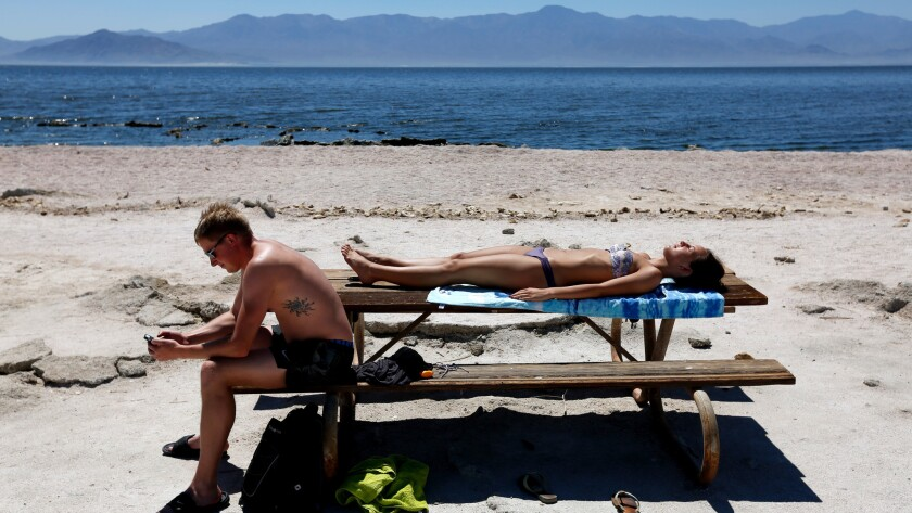 Sunbathing along the Salton Sea