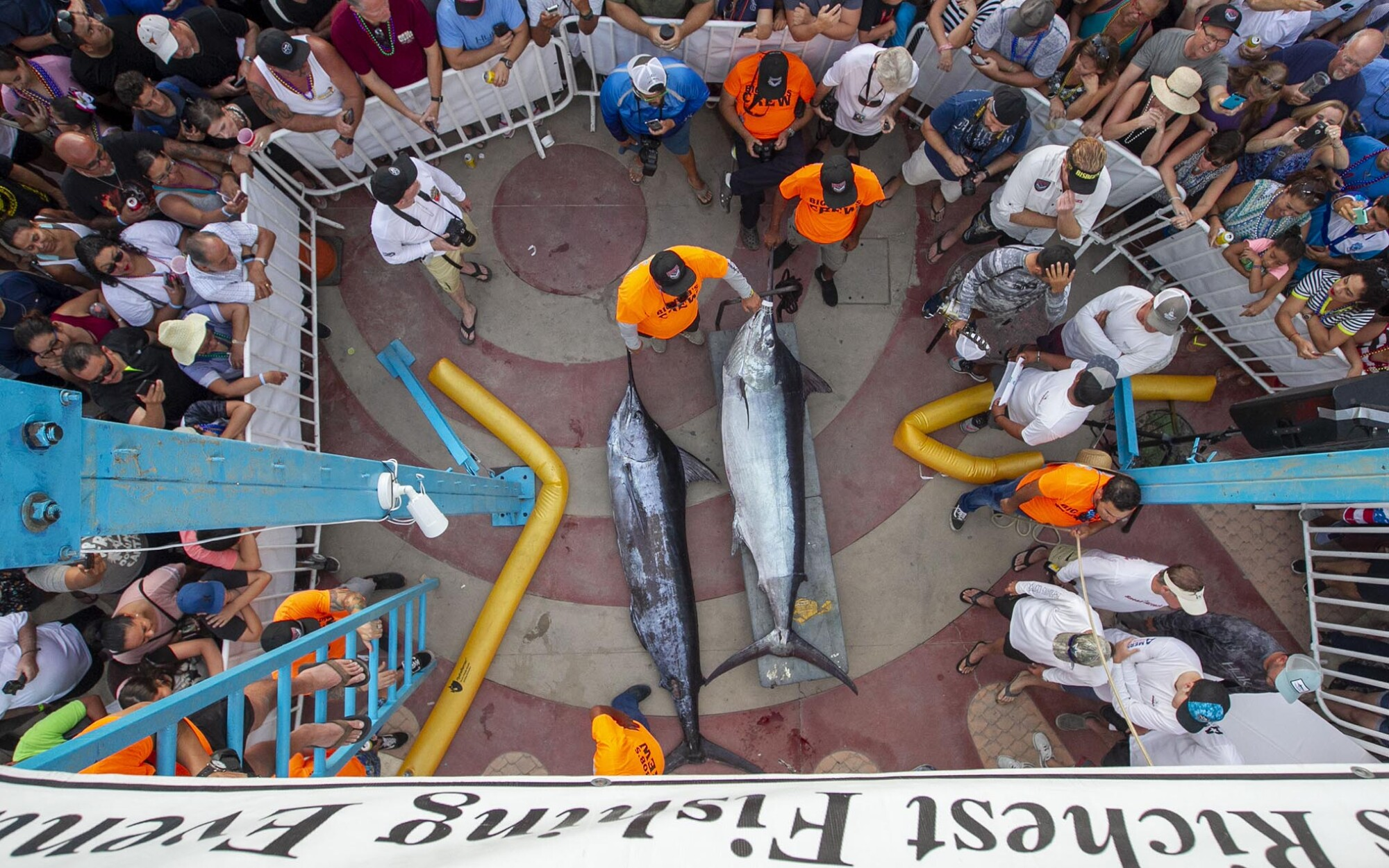 Stella June captain Evan Salvay, a part-time Point Loma resident, returned to the Bisbee's Black and Blue marlin tournament a year after winning $3 million in 2018.