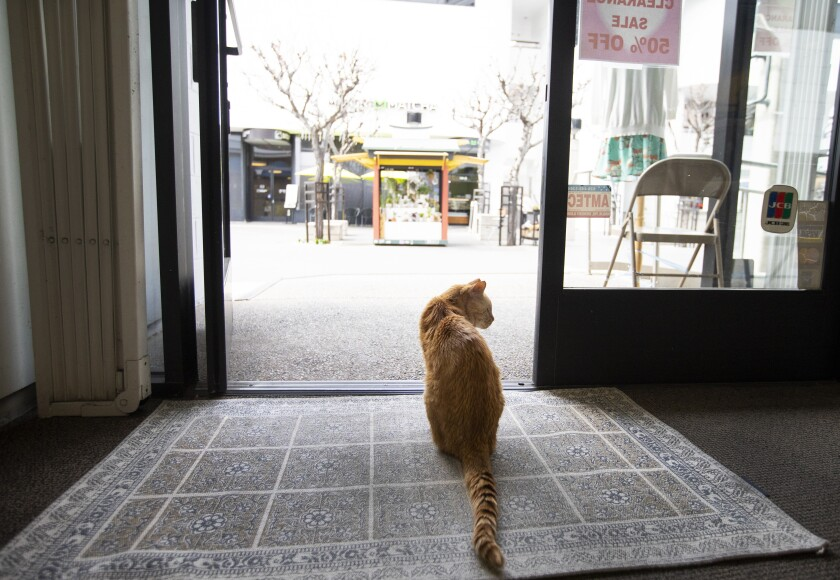 After eating lunch Mr. Sherman, sits near the front door of a women's boutique in Little Tokyo