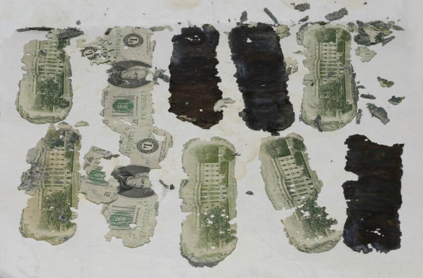 Some of the stolen $20 bills taken by a hijacker calling himself D.B Cooper and found in Oregon, U.S., by a young boy in 1980, are displayed in an undated FBI picture.