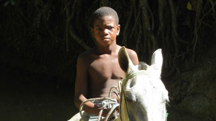 A Palenque youth guides a horse across a waterway near his Colombian village, founded by the first o