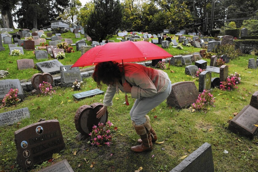 """Rhona Levy has three cats and a dog buried at Hartsdale Pet Cemetery in New York. One day she'll be buried alongside them. """"Who do you want to be with when you're dead?"""" she says. """"You want to be with your family."""""""