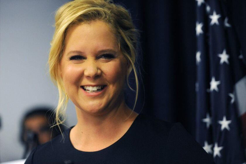 Actress Amy Schumer revealed she is voting for Gov. Cuomo and is backing Zephyr Teachout for attorney general.
