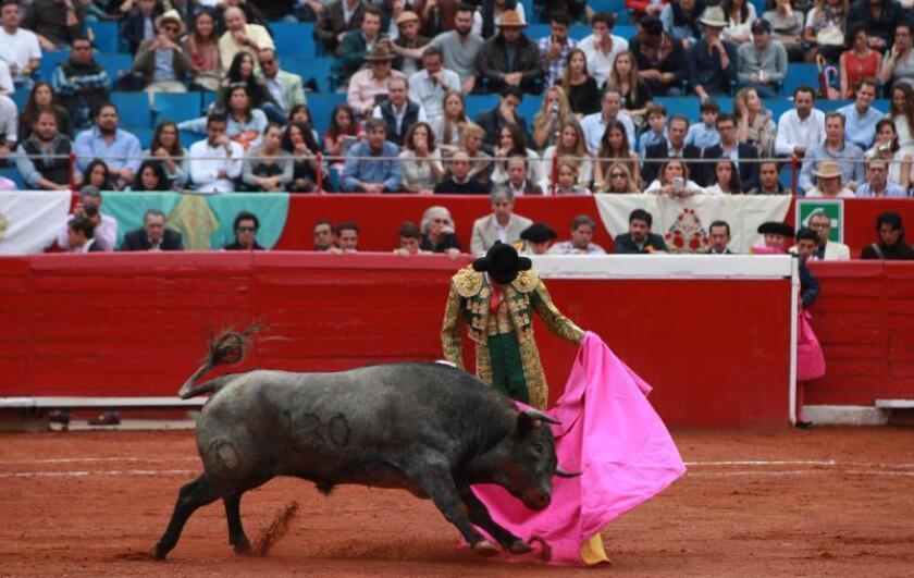 Miguel Aguilar impacta en la primera novillada del 2019 en la Plaza México
