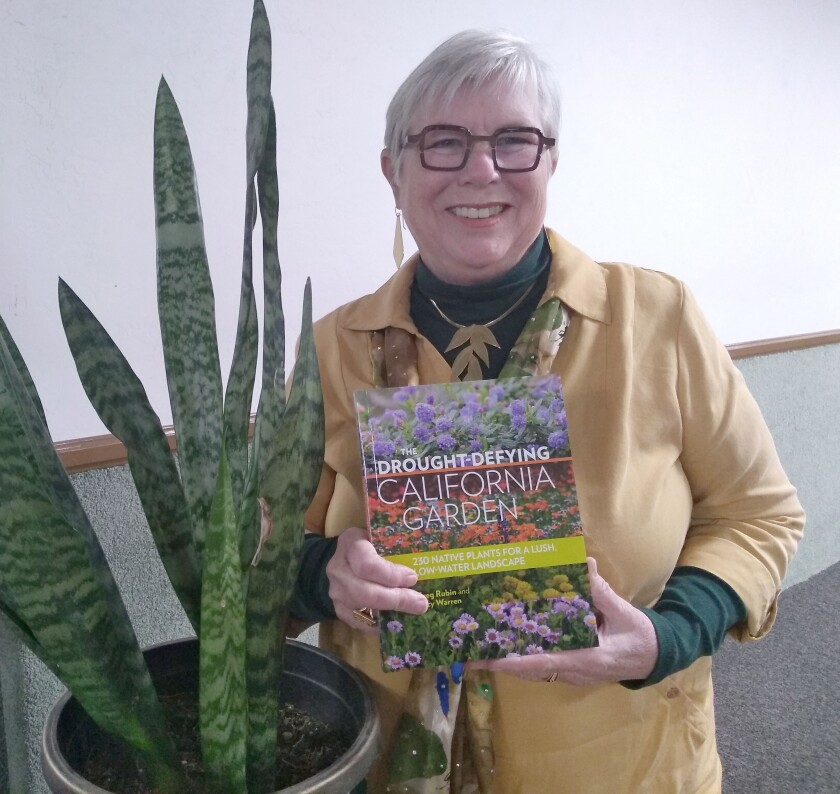Lucy Warren of San Diego shared tips for landscaping with native plants at the Ramona Garden Club's Jan. 8 meeting held in Mountain View Community Church.