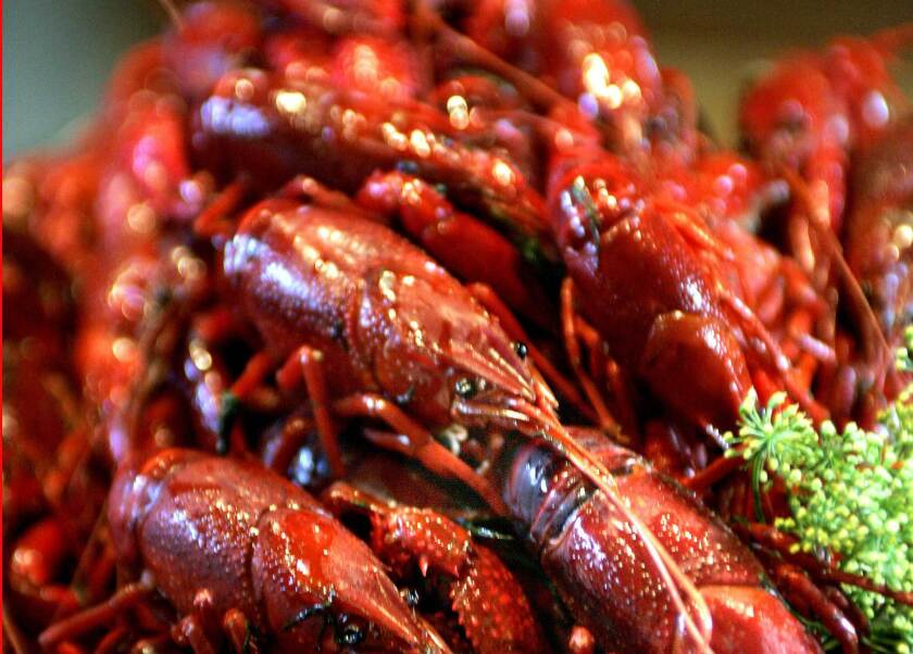 Love crayfish? IKEA's having an all-you-can-eat crayfish feast at your local store on Aug. 16