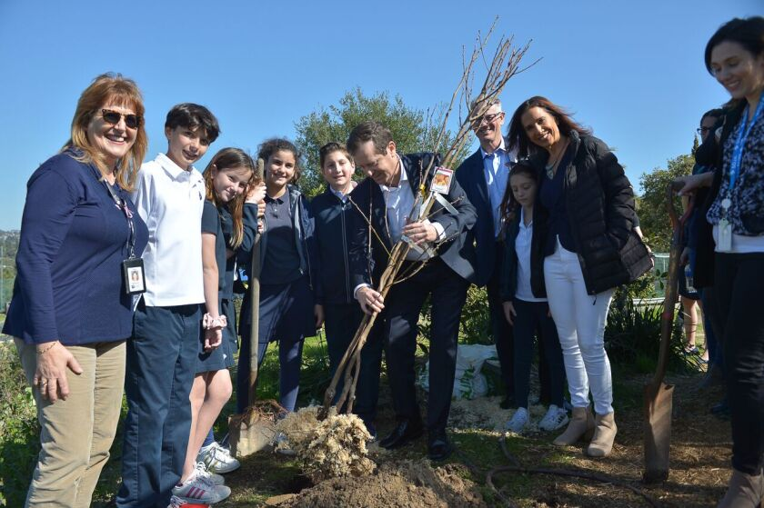 Isaac Herzog, chairman of The Jewish Agency for Israel (center with tree) joined SDJA fifth graders to plant a nectarine tree in SDJA's garden.