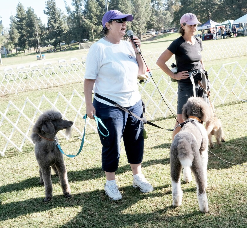 RB Dog Park Liaison Robin Kaufman, left, during the park's 15th anniversary celebration in October 2019.