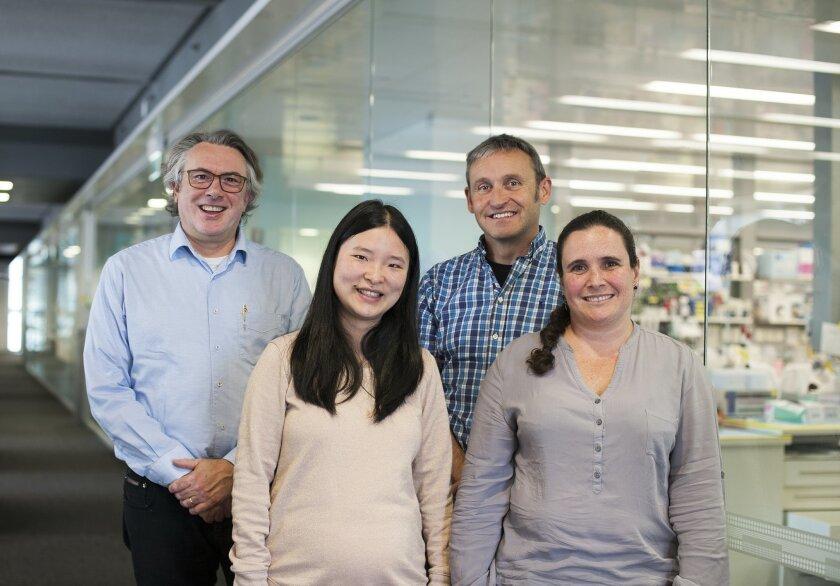 Paul Ekert, Chunyan Ma, John Silke and Gabriella Brumatti report they have found a new way to kill cancer cells.