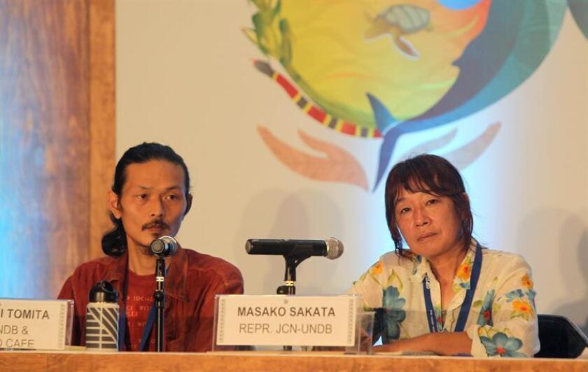 """Expertos japoneses pidieron hoy una respuesta internacional """"contundente"""" para mitigar las repercusiones del accidente registrado en la planta nuclear de Fukushima en 2011, en el marco de la Cumbre de la ONU sobre Biodiversidad que se desarrolla en el balneario mexicano de Cancún. EFE/ARCHIVO"""
