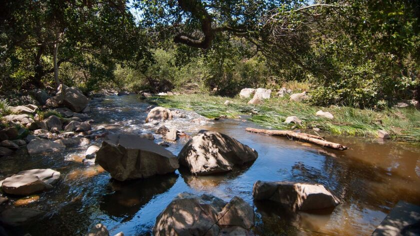 Escondido Creek runs through the Elfin Forest Recreational Reserve, which has 11 miles of hiking tra