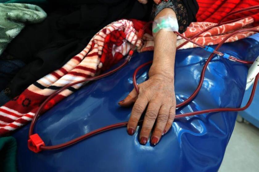 Vista de una persona que recibe tratamiento de diálisis en un hospital. EFE/ Yahya Arhab/Archivo