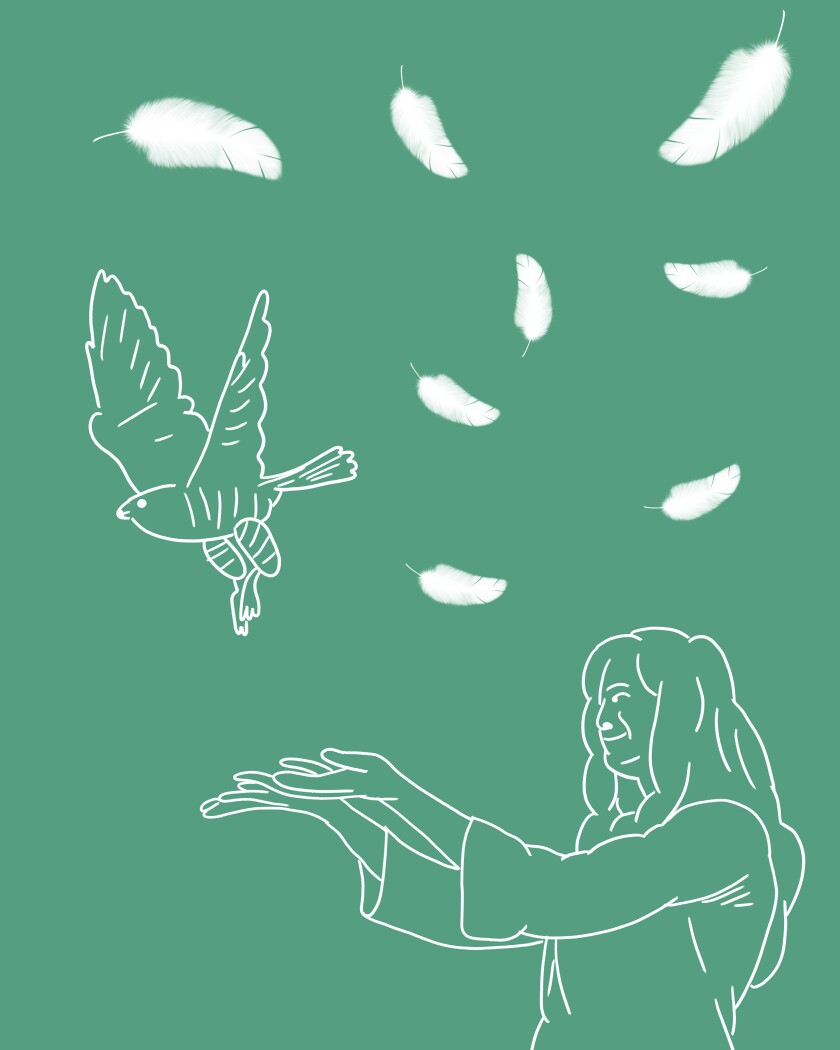 Illustration of a girl releasing a falcon